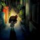 夜廻(よまわり) (steam版)