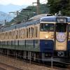 115系横須賀色 5連 団体運用