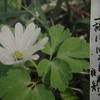 2月26日花と花言葉・歌句