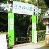 大神(おおみわ)神社に行ってきました(奈良・桜井) / ささゆり編
