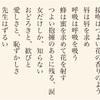 太宰治と心中した女、山崎富栄の日記『雨の玉川心中』がおもしろい