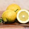 コンビニ飯でも疲労回復できる!ポイントは、自分のタイプで「味覚」を選ぶこと!