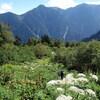 今度は南アルプス 北岳に挑戦(その6)北岳肩ノ小屋~白根御池小屋~広河原