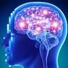 """""""脳を最適化する ブレインフィットネス"""" - 資産としての脳管理"""