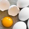 卵は最強のスーパーフード