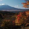富士山 紅葉2020 山中湖など