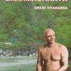 ディヤーナ・ヨーガ  その2 スワミ シヴァーナンダ の教え