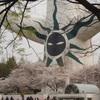 花見/万博記念公園
