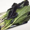 生がうまい! 紫小松菜とブリーチーズのサラダ
