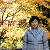 背景は根尾平野の紅葉