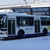 中国バス 419