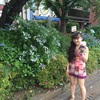 紫陽花鑑賞散歩とプレミアム生クリームソフト♪クレミア♪
