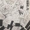 ワンピースブログ[二十八巻] 第263話〝海賊ナミと変な騎士VS副神兵長ホトリとコトリ〟