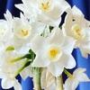 こんな時だからこそ、花でみんなを笑顔に!