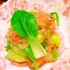 チキンと青梗菜の中華風ピリ爽★甘酢生姜サラダ