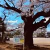 船橋グランドサウナandカプセルホテル(千葉県船橋市)