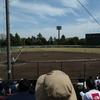 春の東京野球
