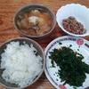 モロヘイタと卵とキャベツの味噌汁