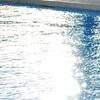 今年はプール実施!!