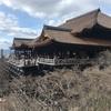 【京都】☆世界遺産☆貴重な改修中の清水寺へ、境内の見どころを紹介