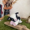シャカシャカの牛さん🐄🐮