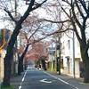 駒沢公園一人ハーフマラソン
