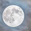 【健康】眠れぬ夜はきみのせい:満月の夜【睡眠】
