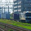 6月26日撮影 東海道線 平塚~茅ヶ崎間 貨物列車② EF200牽引 レール輸送貨物8097ㇾ