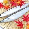 DHA・EPAとは?DHA・EPAが摂れる魚以外の食べ物を紹介します。