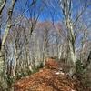 初冬の日本国を登るⅠ