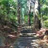 和歌山県にある世界遺産「紀伊山地の霊場と参詣道」で自然を満喫!!