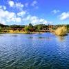 亀山湖!私的お勧めのオカッパリポイント1