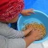 【食育】親子で手作り味噌体験!大豆を煮て潰して丸めて詰めて、4歳児の好きな作業が満載