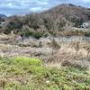 石神台遊水池(仮称)(神奈川県大磯)