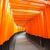 2019冬の京都 Day4:まだまだ歩く最終日