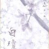 【外部出演】時代絵巻AsH 特別公演 『白瓊〜しらぬい〜』9/8~9/11