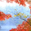 紅葉と雪景色①
