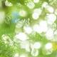 【フリー音楽】新年度の春に 期待度いっぱいの明るい曲
