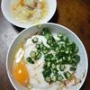 長芋とオクラ丼