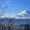 富士山と伊豆・箱根の魅力 僕の故郷自慢