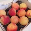 Bristol Farms 箱入りの桃をクーポンでGET★