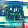 【東京町まみある記002】谷根千《やねせん》微妙紀行。