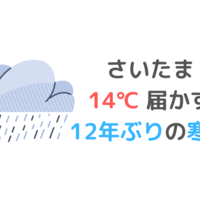 さいたま 14℃に届かず 12年ぶりの寒さ