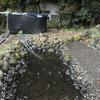 カメトープの水をキレイにする。排水編