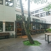 沢村ベーカリーでモーニング in軽井沢