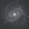M100 かみのけ座 棒渦巻銀河 ぐるぐる