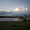 ドングリと入道雲とハイドン