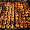 「毎日が嬉しい柿の収穫ときたもんだ。3桁だぜ。」 - 柿の実色した水曜日