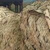【創作】羊にも種類はさまざま【思い浮かぶのは?】