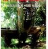『歩いて見た太平洋戦争の島々』安島太佳由著、吉田裕監修(岩波ジュニア新書)